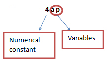 numbers and variables